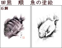 Drawfishishidaimid