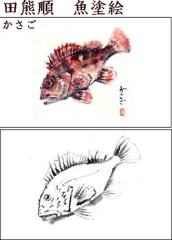 Drawfishkasagommid