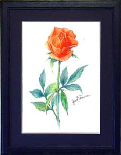 Roseredpencila4bl