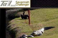 Savannah_challenger
