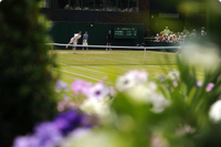 Flower_and_tennis