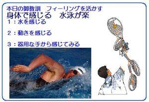 Sayingswimser