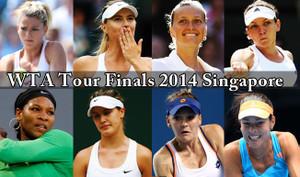 Wtatourfinals2014singapore