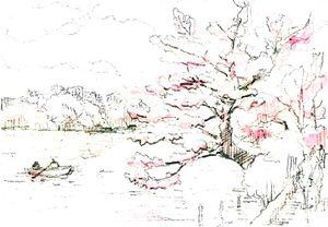 Sketch_cherry_color1