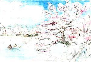 Sketch_cherry_color2