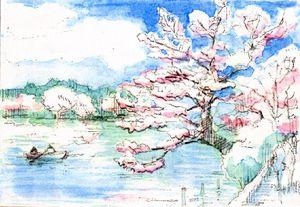 Sketch_cherry_color3