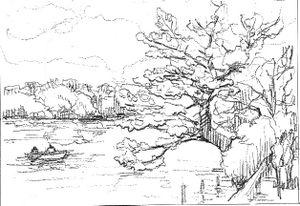Sketch_cherry_draw