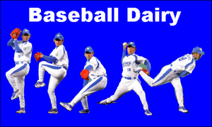 Baseball_dairy_blue