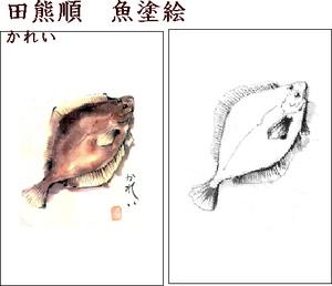 Drawfishkareimid