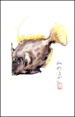 Letkawahagimid