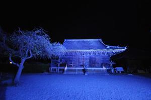 Lightup3_blue