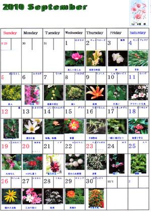 Flowerseptember