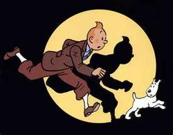 Tintindog